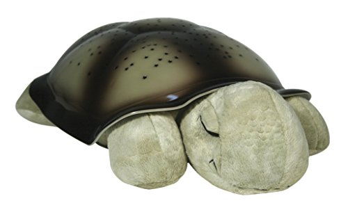 CloudB 7323z Twilight Turtle-Classic-1